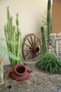 Stunning desert garden ideas for home yard 32