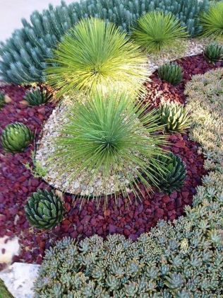 Stunning desert garden ideas for home yard 36