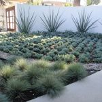 Stunning desert garden ideas for home yard 38