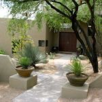 Stunning desert garden ideas for home yard 66