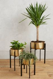 Cool Plant Stand Design Ideas for Indoor Houseplant 45