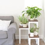 Cool Plant Stand Design Ideas for Indoor Houseplant 7