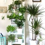 Cool Plant Stand Design Ideas for Indoor Houseplant 71