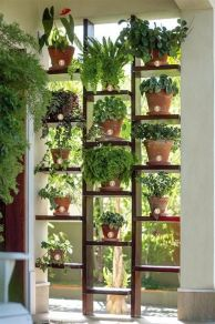 Cool Plant Stand Design Ideas for Indoor Houseplant 93