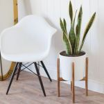 Cool Plant Stand Design Ideas for Indoor Houseplant 94
