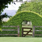 Fascinating Garden Gates and Fence Design Ideas