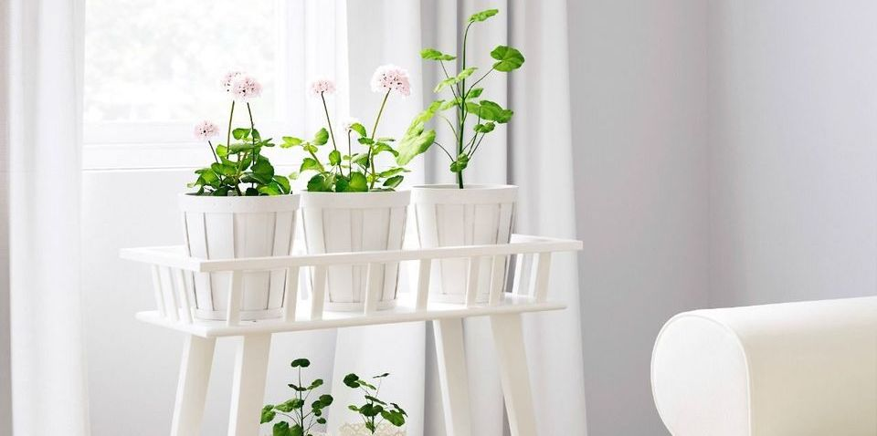 Indoor Houseplant Stand Design Ideas