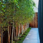 Stunning Privacy Fence Line Landscaping Ideas 18