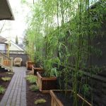 Stunning Privacy Fence Line Landscaping Ideas 76
