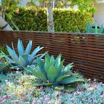 Modern and Contemporary Front Yard Landscaping Ideas 25
