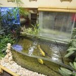 Amazing Indoor Water Features Design Ideas 41