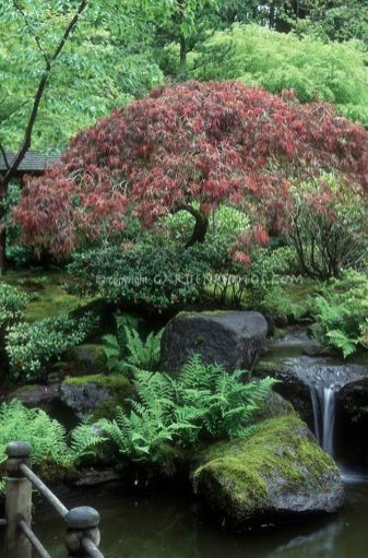 Peacefully Japanese Zen Garden Gallery Inspirations 60