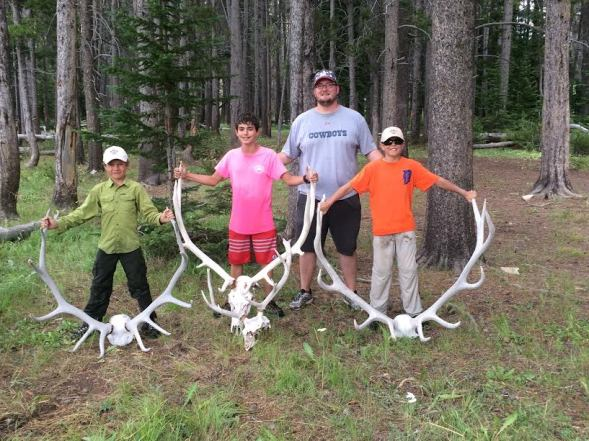 Longhorn Skulls