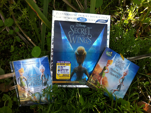 Secret of the Wings Giveaway