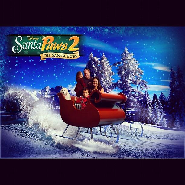 Santa Paws Christmas Photo