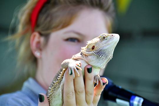 Reptile Zoo