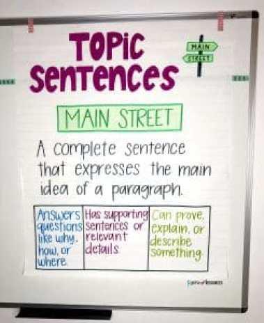 11 sentence paragraph example