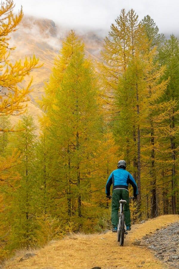 VTT Mélèzes automne