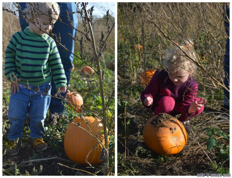 We loved choosing our pumpkins at Willows last year too!