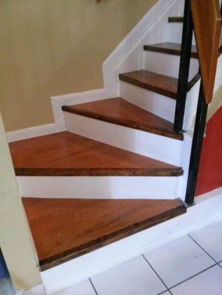 Remove Carpet from Stairs / Damaged by Cats