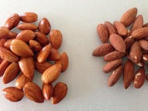 Activate:NonActivated Almonds