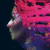 220px-Steven_Wilson_Hand_Cannot_Erase_cover