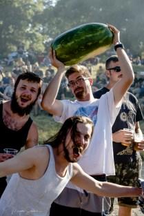 Topfest 2019, Fans