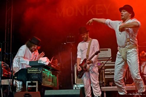 Monkey_Business, Slavnosti břeclavského piva 2019