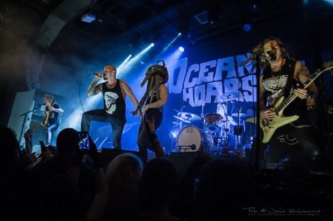 Oceanhorse, Roxy Praha 2020