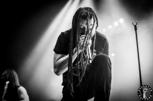 nonpoint16