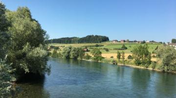 Blick auf die Reuss bei Mühlau