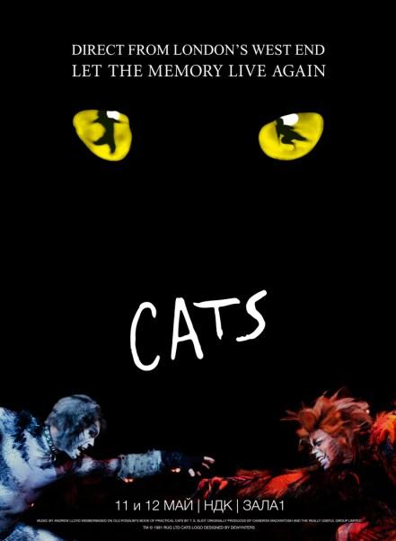 2017.05.11-12 Cats