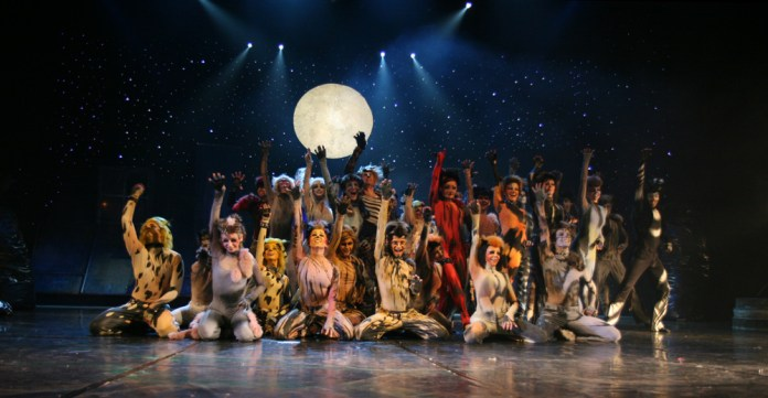Cats Koty_musical
