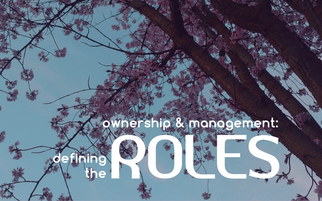 Ownership & Management: Defining the Roles