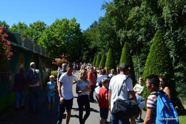 Avonturenpark Hellendoorn 80 jaar (38)