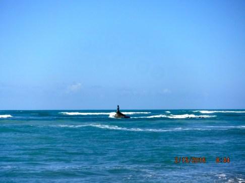 Mermaid at Los Estrillos Oeste
