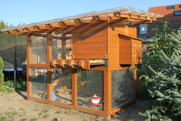 Le Meilleur Chicken Coop Construction Coop Thoughts Blog Ce Mois Ci