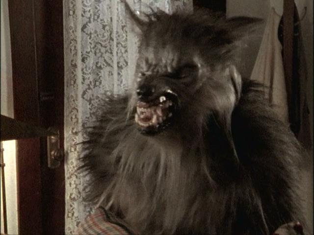 Le Meilleur 18 Scary And Sometimes Silly Werewolf Costumes From Ce Mois Ci