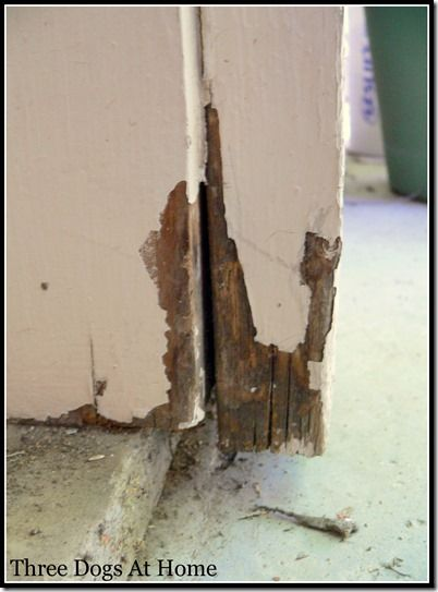 Le Meilleur How To Repair Rotten Door Frame Using Elmer S Rotted Wood Ce Mois Ci