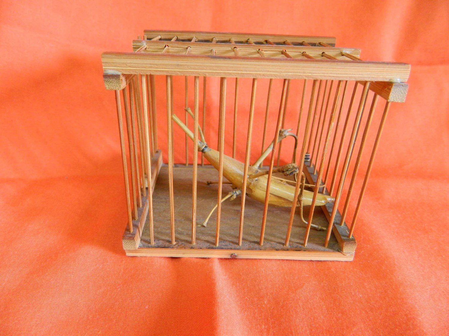 Le Meilleur On Sale Bamboo Cricket Cage Japanese Good Fortune Symbol Ce Mois Ci