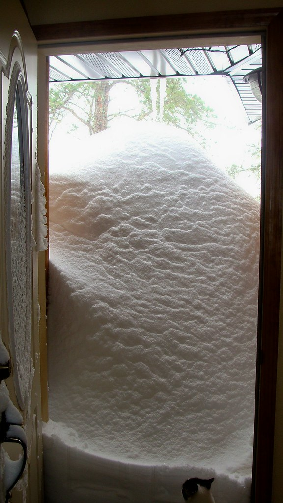 Le Meilleur The Snow Drift Out My Front Door I Know I Was Rather Ce Mois Ci