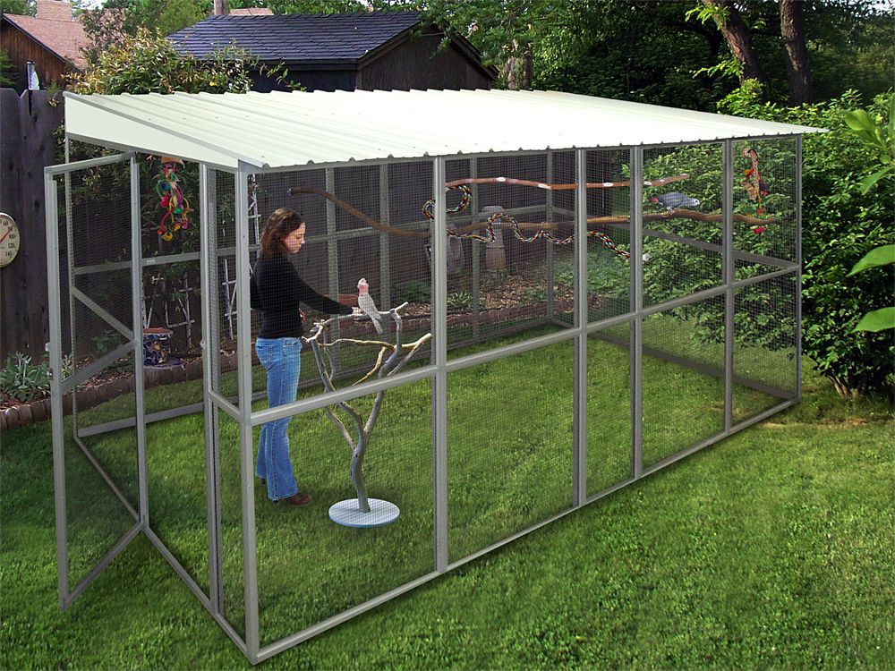 Le Meilleur Aviary Cage Materials Google Search Outdoor Aviaries Ce Mois Ci