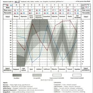Taylor-Johnson Temperament Analysis