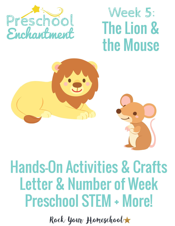 Preschool Enchantment Week 5 The Lion Amp The Mouse