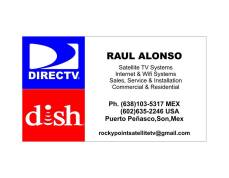 Satellite TV Systems Raul Alonso