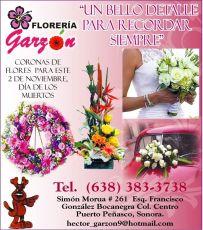 Floreria Garzon