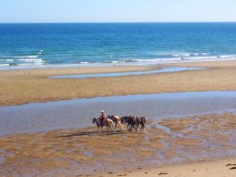 horseback-beach