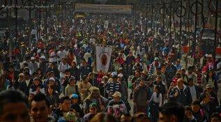 377551_180992655330595_152645858165275_322532_835000101_n Día de la Virgen de Guadalupe