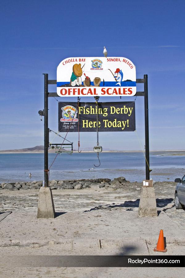 mg_0517- CBSC Fishing Derby in Cholla Bay