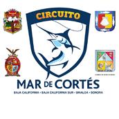 CircuitoMarDeCortes2012 5th Deep Sea Fishing Tournament  7/7 - 7/8